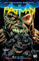 Batman Vol. 3 Reviews