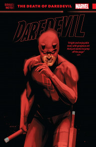 Daredevil Vol. 8: Death Of Daredevil