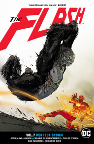 Flash Vol. 7: Perfect Storm