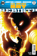 Justice League of America: The Ray Rebirth #1