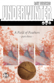 Underwinter: A Field of Feathers #3